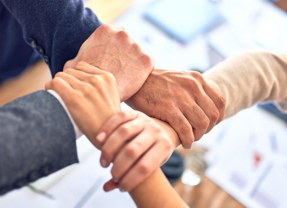 Vertrieb und Credit Management: Umsatz erhöhen, Risiken senken - gemeinsam
